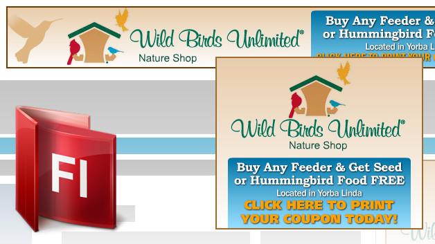 flash-banner-design-wildbirds-1